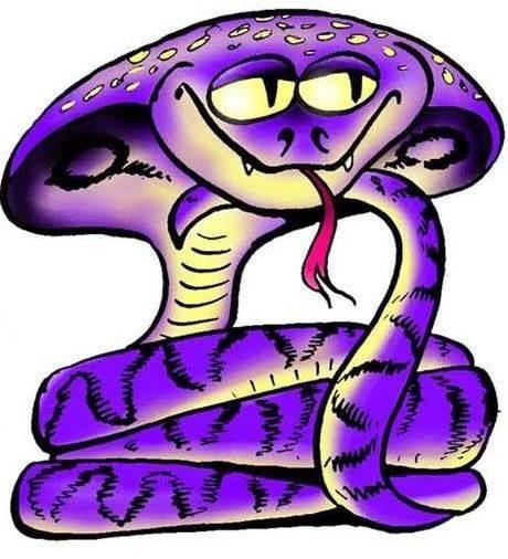 Бык и змея: совместимость по восточному гороскопу