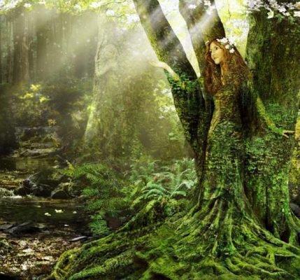 Лесные нимфы (дриады): у греков, древнегреческая мифология, имена