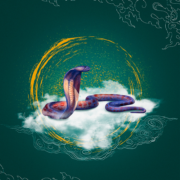 Змея и Тигр: совместимость по восточному гороскопу