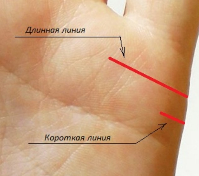 Линия брака (любви) на руке: хиромантия, у женщины, значение