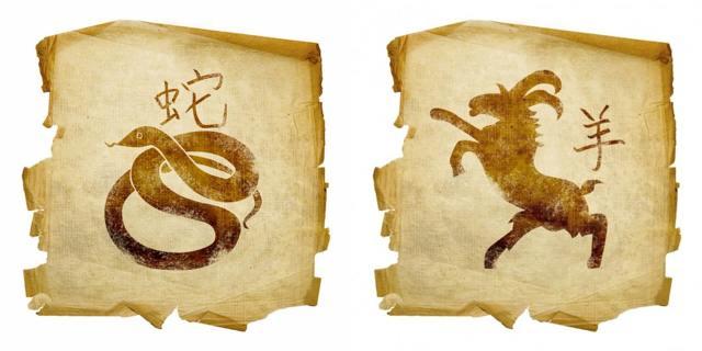Змея и коза: совместимость в любви по гороскопу
