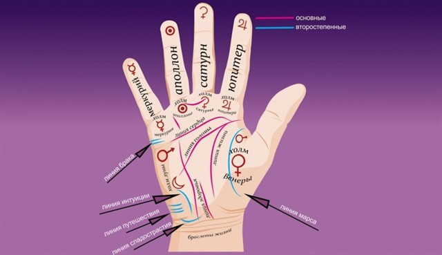 Знаки на руке: хиромантия, значение, редкие