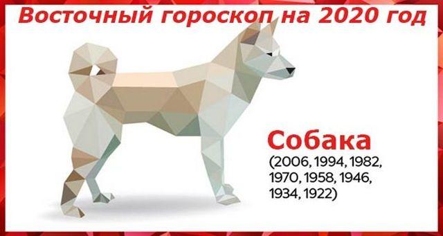 Гороскоп на 2020 год по году рождения для мужчины-Собаки: что ждет в любви и отношениях, деньгах и карьере, прогноз от Глоба и Володиной