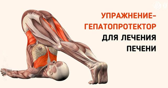 Мудры для печени: лечение болезней, очищение и поддержание здоровья, техника выполнения упражнений