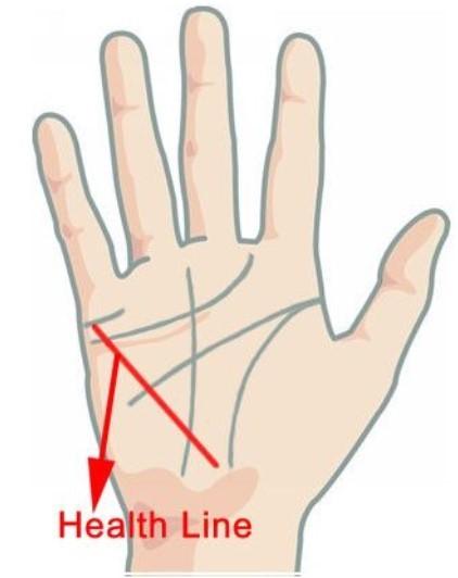 Линии на руке: хиромантия с разъяснениями, значение, расшифровка