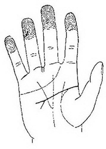 Двойная линия судьбы: раздваивается, правая и левая рука, заканчивается вилкой
