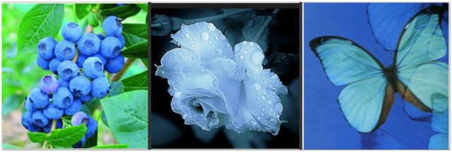 Голубая аура: что означает для человека, влияние на здоровье и характер, сочетание с другими оттенками, особенности в зависимости от места на теле