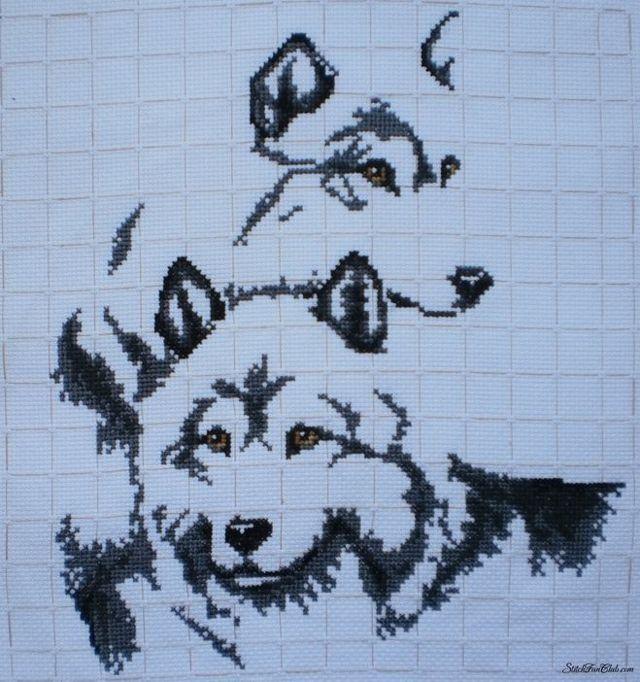 Печать Велеса: медвежья и волчья лапа, значение, амулет