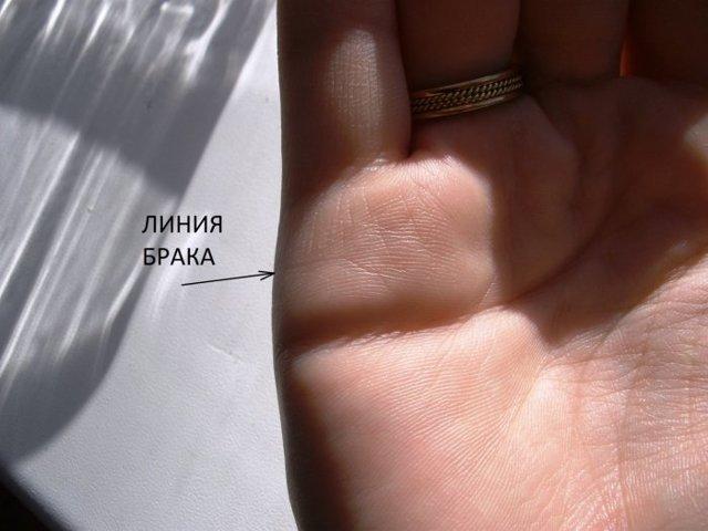 Галина зотеева фотозона создано это